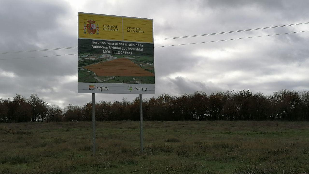 Terrenos donde se hará la ampliación del polígono industrial de Morelle, en Sarria