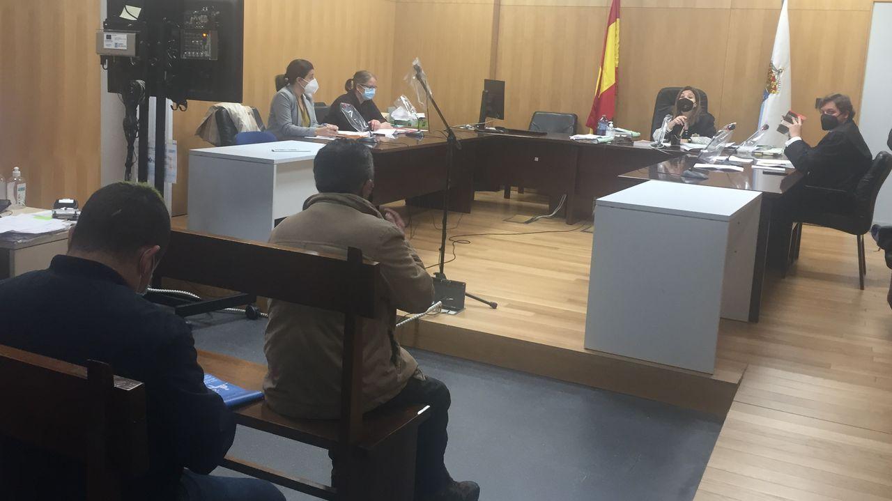 Las condiciones deplorables en las que se encuentran las vacas.Palacio de Justicia de Gijón