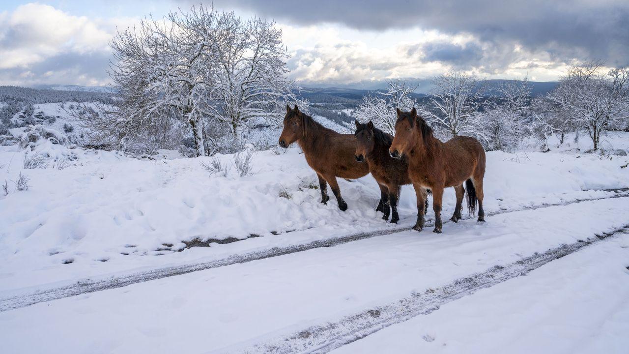 Estampas de la nevada en la aldea de O Busto, a más de mil metros de altura.El alcalde, en el centro, junto al edificio que servirá de albergue