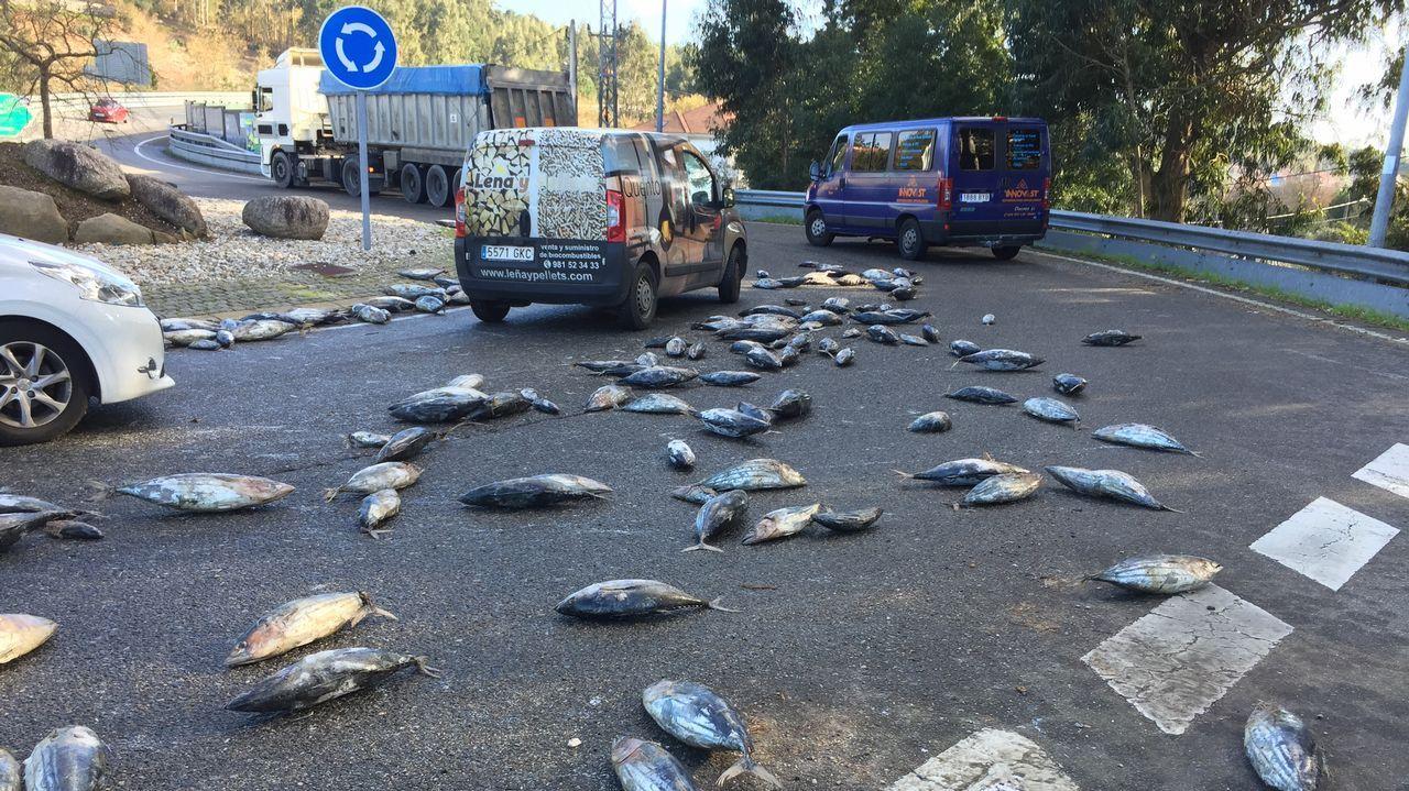 Un camión cargado de túnidos pierde parte de su carga en Carril.Khadija Arhoun, la joven marroquí que sueña con ser Guardia Civil