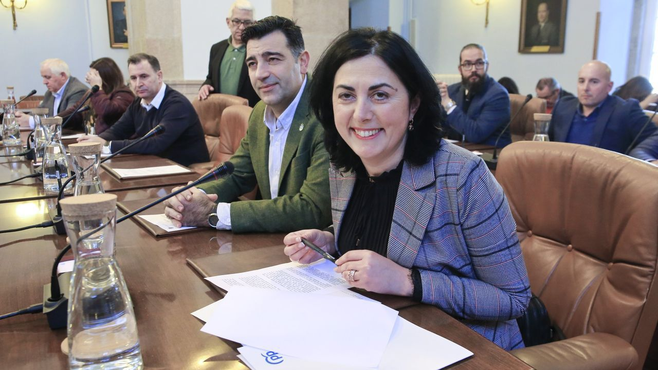 Elena Candia, presidenta del PP de Lugo y hasta unos meses portavoz popular en la Diputación