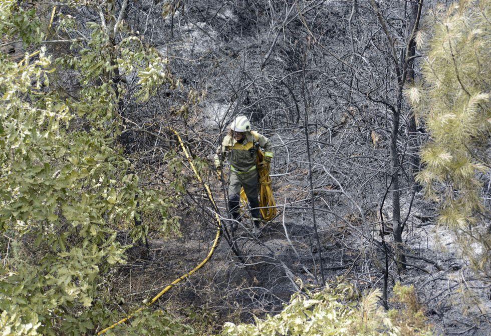 Calcinadas más de 1.000 hectáreas en los incendios que afectan a Oímbra y a Muíños.El incendio de Cualedro, anoche