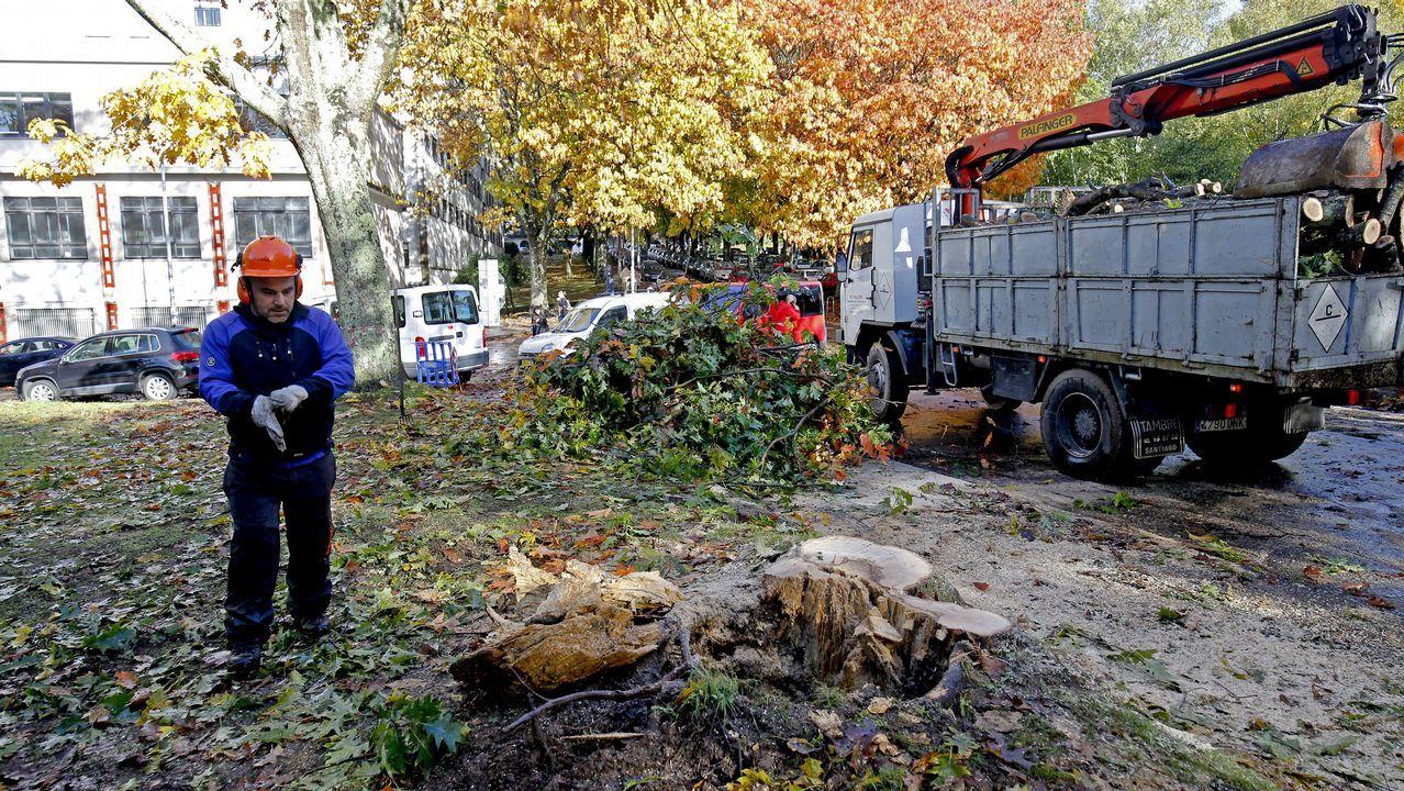 El temporal deja un reguero de incidencias en Santiago y comarcas