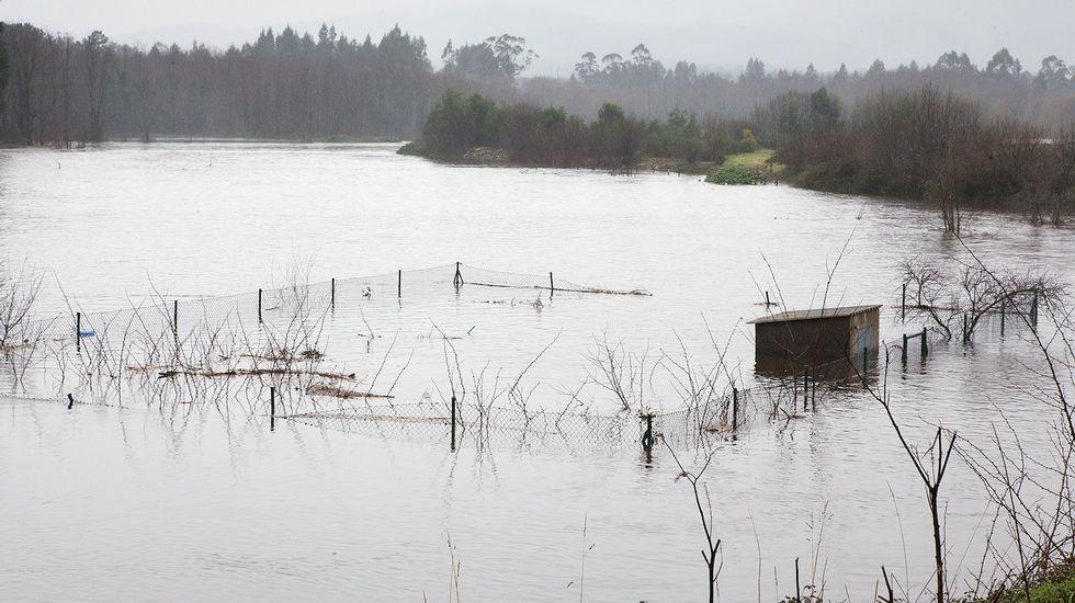 Campos inundados en los accesos del polígono de Pazos en Padrón.