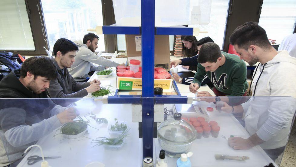 La Coral del Liceo de Ourense actuará en Sarria