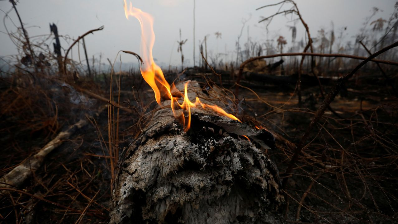 Imagen de los incendios en el Amazonas, en Boca do Acre, en Brasil