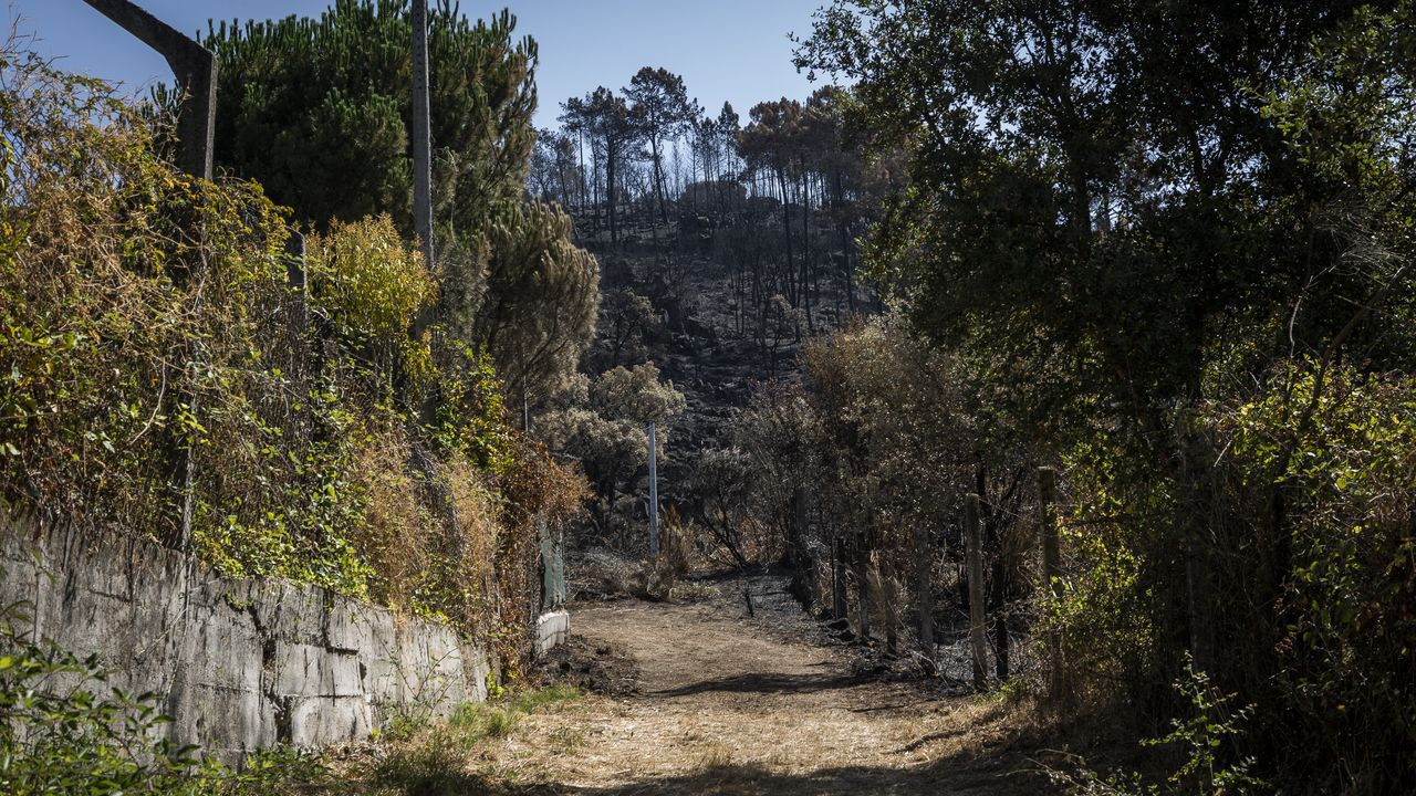 Incendio forestal en Ames.Las llamas afectaron a 52 hectáreas, 28 de ellas arboladas
