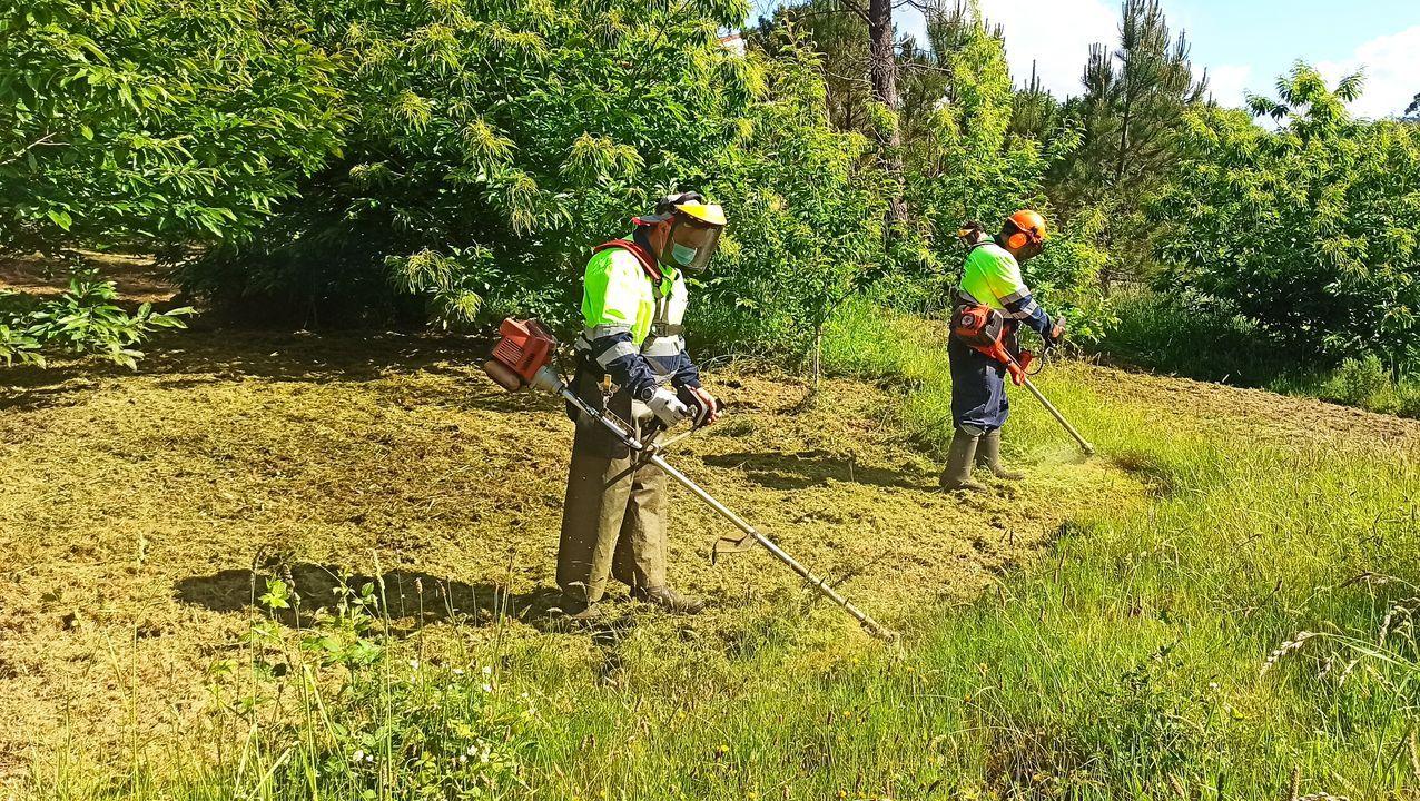 Operarios contratados en Mazaricos para realizar labores de limpieza