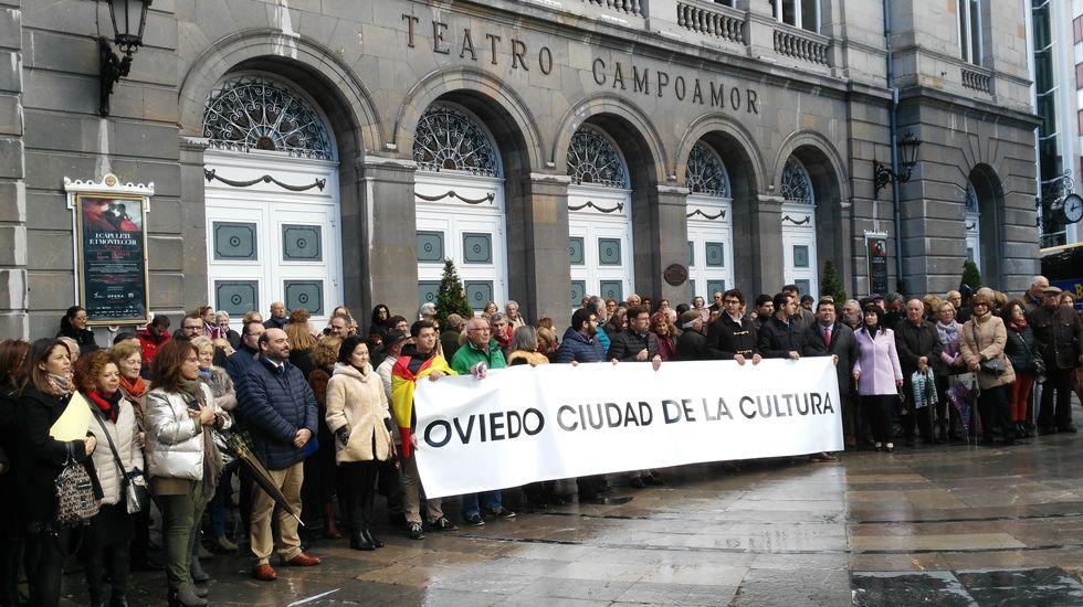El diputado del PP, David González Medina..Manifestación a favor de los Premios Líricos Teatro Campoamor