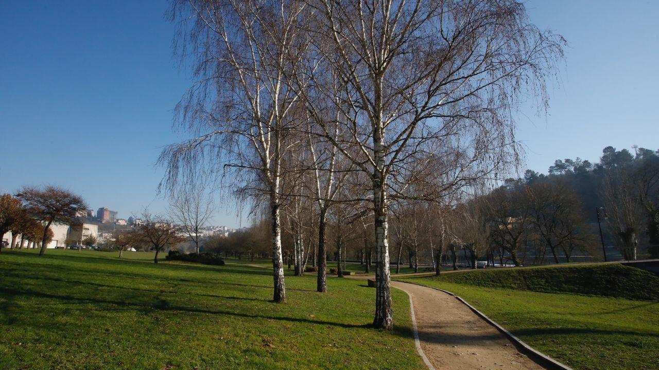 El parque que rodea el Pazo de Feiras