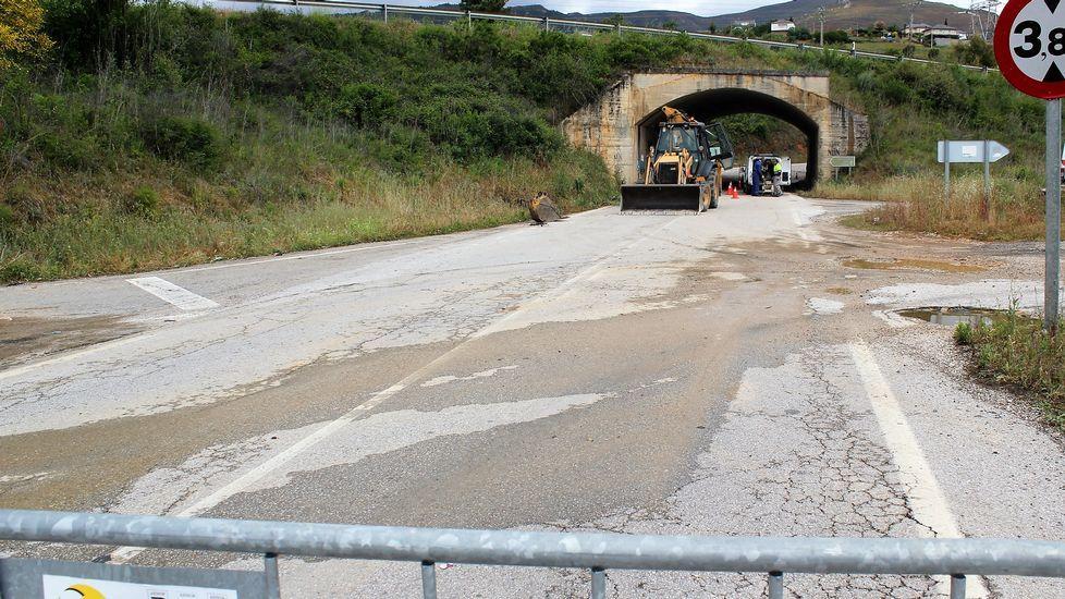 Ola de calor en Lugo bañistas en el río Miño.Viñas quemadas por la helada en Monterrei