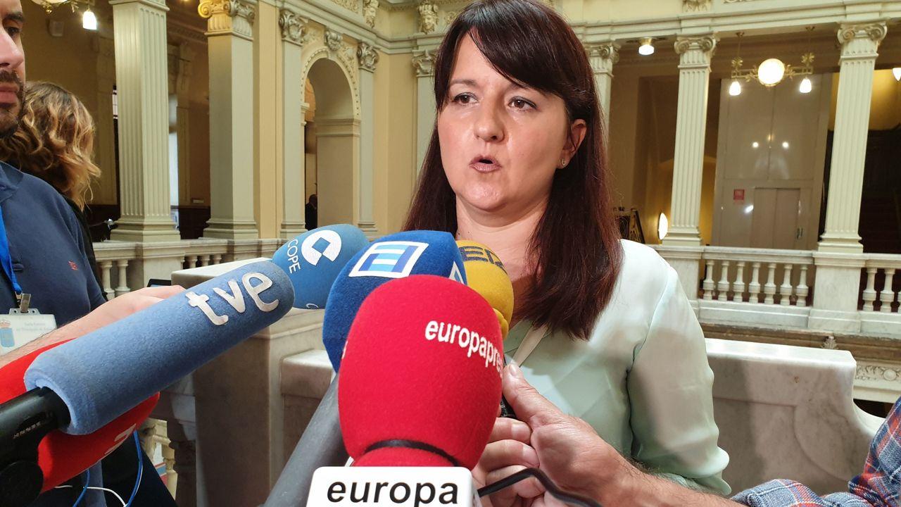 La portavoz del grupo parlamentario de Ciudadanos, Laura Pérez Macho