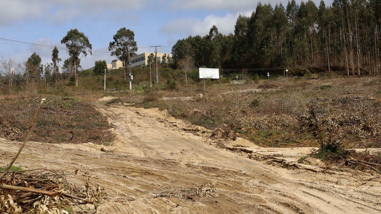 La parcela de dos hectáreas que acogerá el nuevo colegio está situada cerca de Alca y Ventín