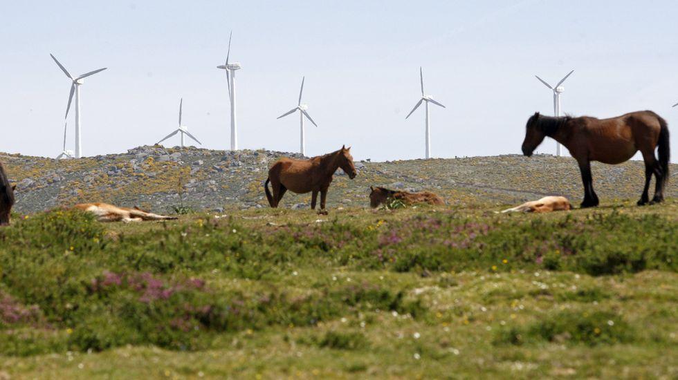 Parque eólico en el pico Aguión