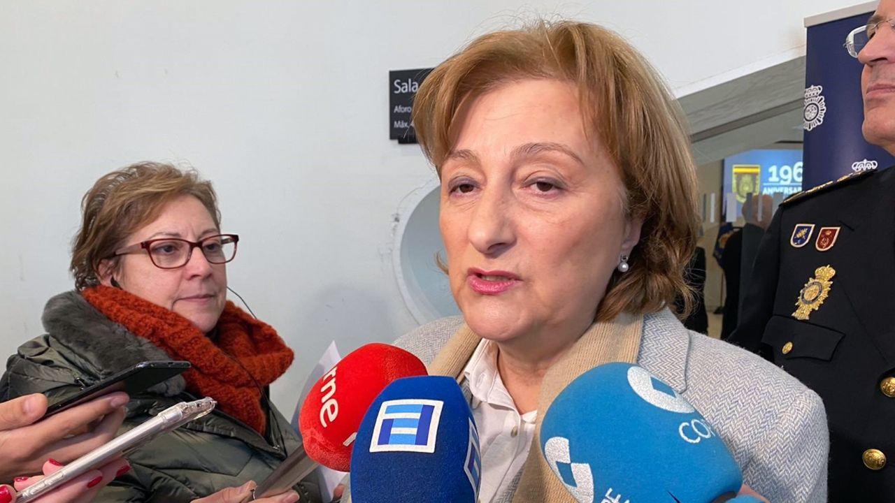 supremo.La delegada del Gobierno en Asturias, Delia Losa