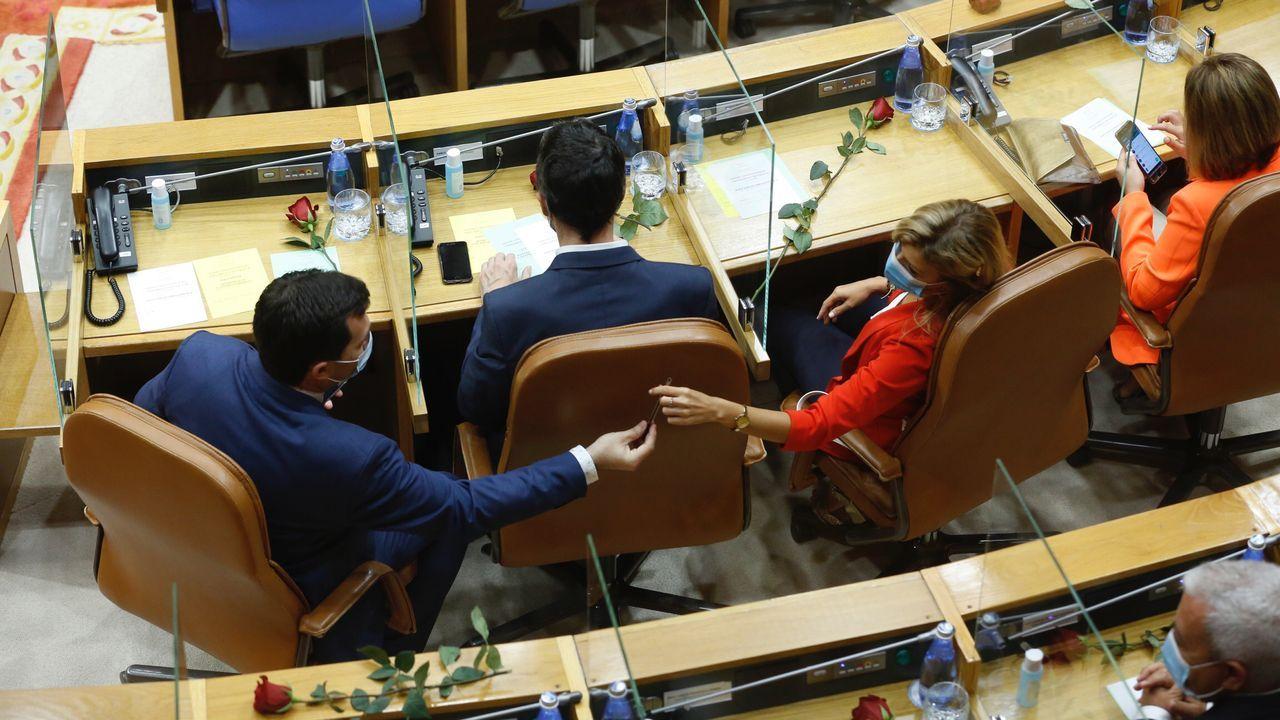 Los diputados socialistas, los primeros en llegar a O Hórreo, portaron una rosa.