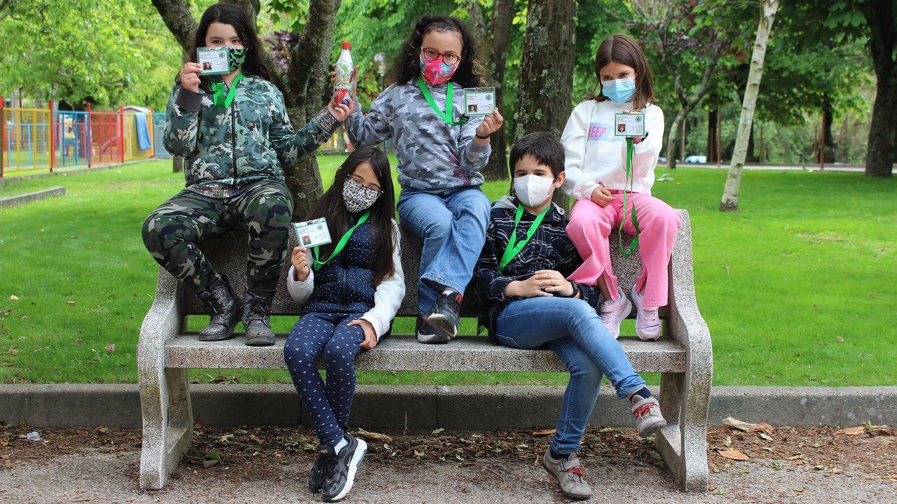 Así viven los estudiantes del Vila do Arenteiro sus proyectos con Voz Natura.Alumnos de la rama de soldadura trabajaron en la construcción del invernadero