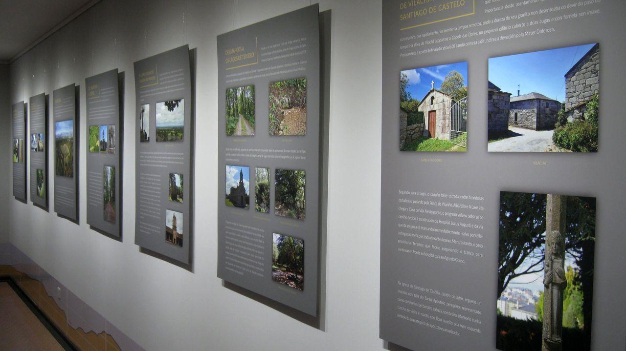 50 años de excavaciones en el castro de Viladonga.La exposición, formada por paneles, puede verse hasta después del verano