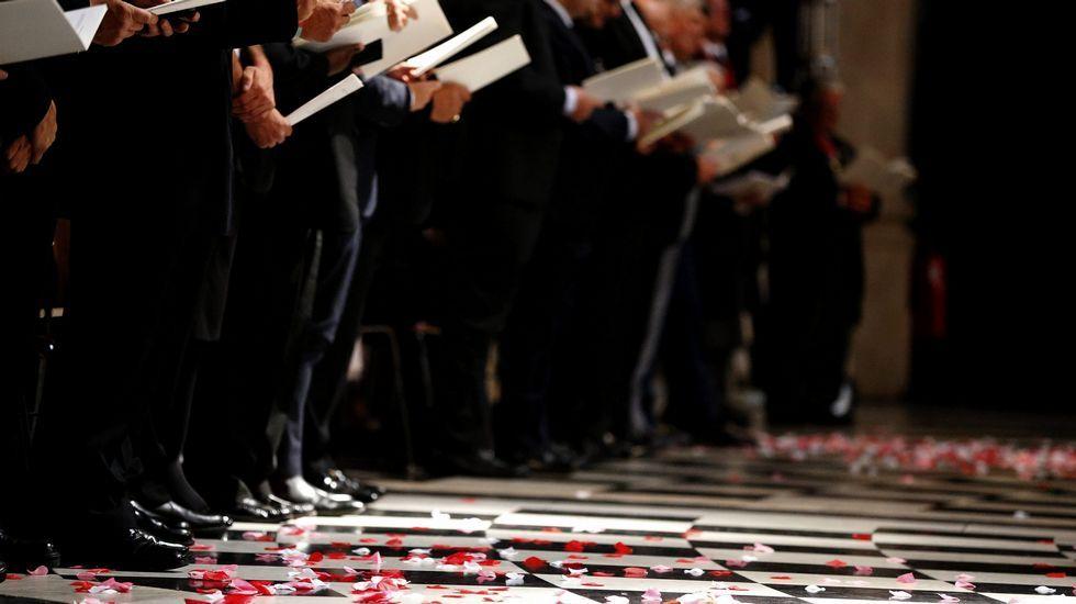 Pétalos de amapolas en el suelo de la catedral Saint Paul durante la ceremonia
