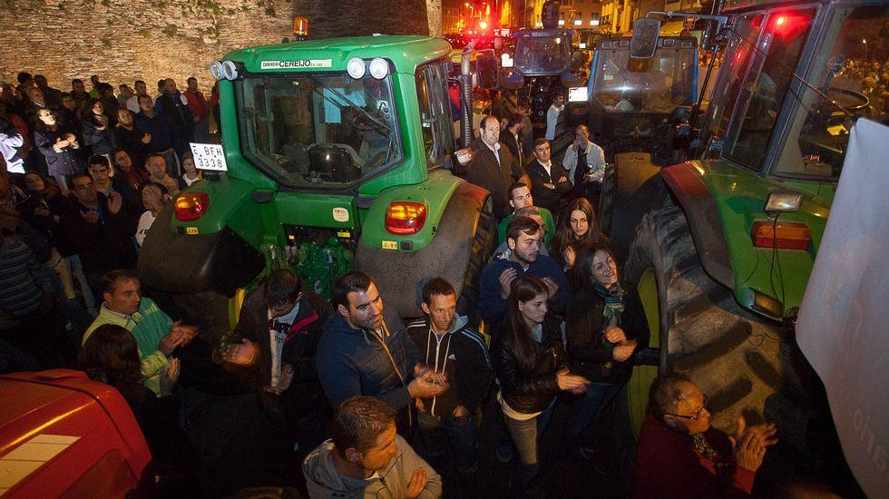 Más de 30.000 firmas de apoyo.En Guntín también fue habilitado un sistema de canalización del tráfico hacia Ourense y Santiago.
