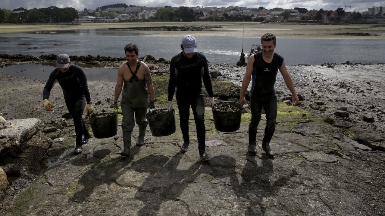 Investigan la aparición de galletas de hidrocarburo en Bastiagueiro.Mariscadores de la ria de O Burgo, durante una campaña de retirada de mejillón salvaje