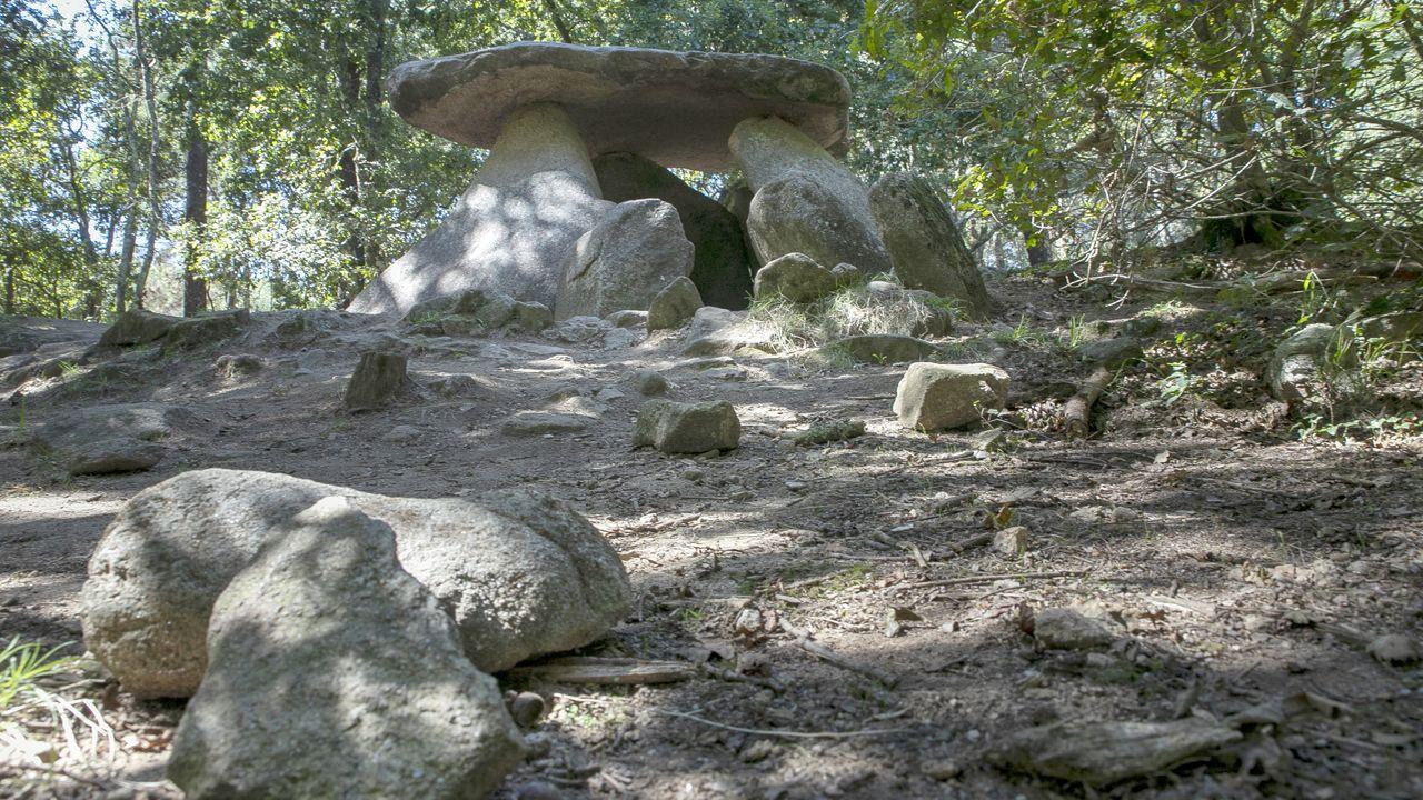 Los barbanzanos llenan el mirador del pico Muralla.Castro de Baroña