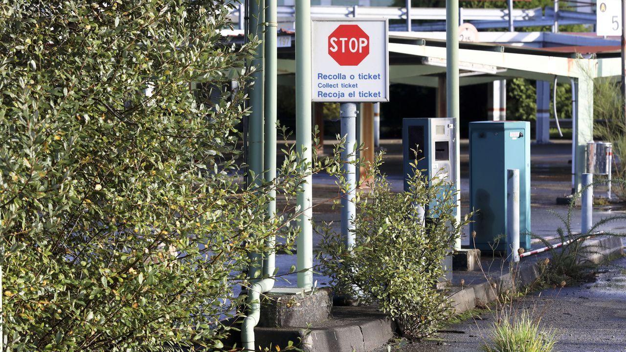 La vegetación crece descontrolada en las viejas instalaciones