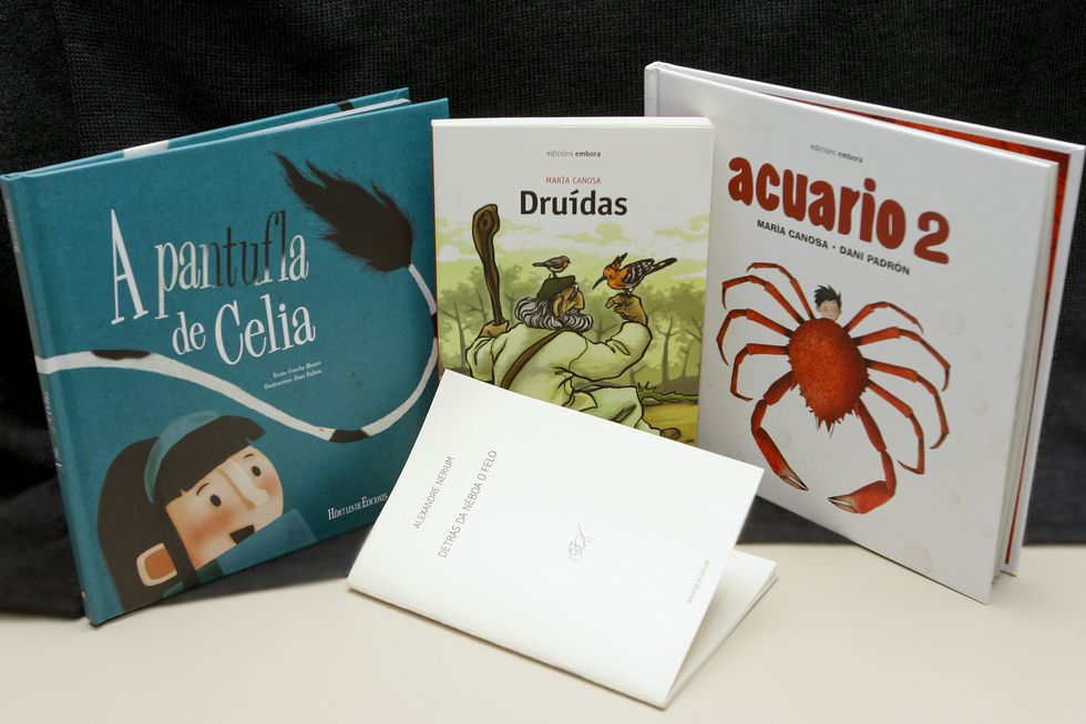 «<span lang= gl >A pantufla de Celia</span>», «<span lang= gl >Druídas</span>», «<span lang= gl >Acuario 2</span>» e «<span lang= gl >Detrás da néboa o felo</span>» son las novedades literarias para este arranque del 2015.