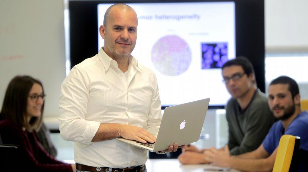 Ellos son la élite de la investigación gallega.El catedrático de Genética David Posada dirige en la Universidade de Vigo el Laboratorio de Filogenómica.