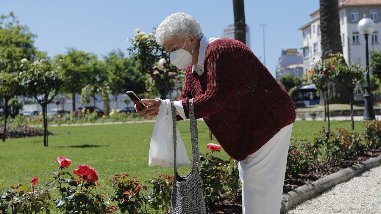 Una mujer fotografía una de las flores de la renovada Rosaleda de los jardines de Méndez Núñez de A Coruña