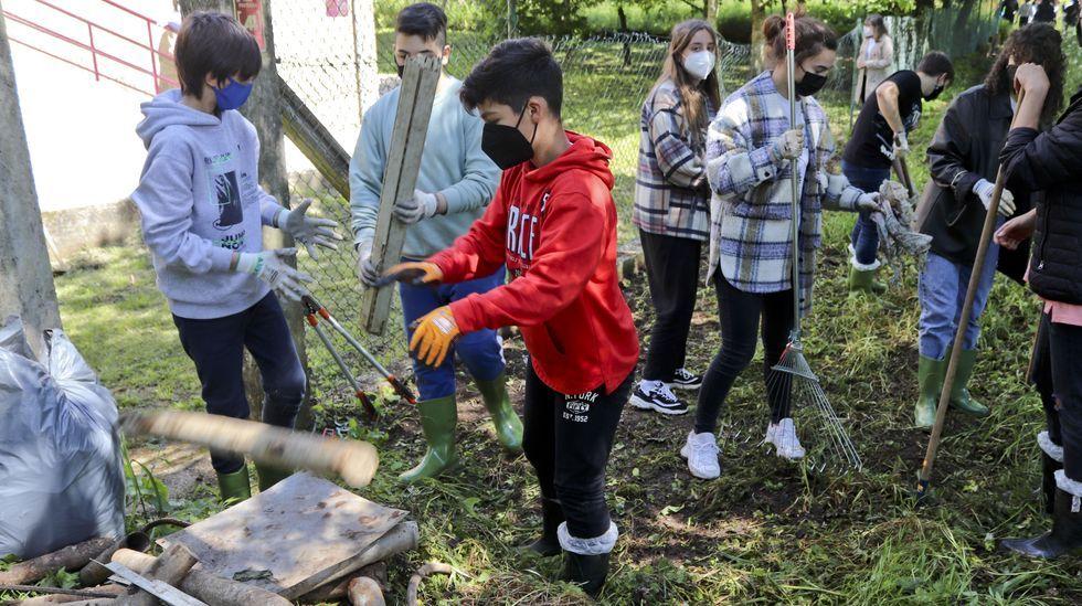 Así es la limpieza del río Corgo llevada a cabo por los alumnos del IES Xelmírez II.Alumnos de la rama de soldadura trabajaron en la construcción del invernadero