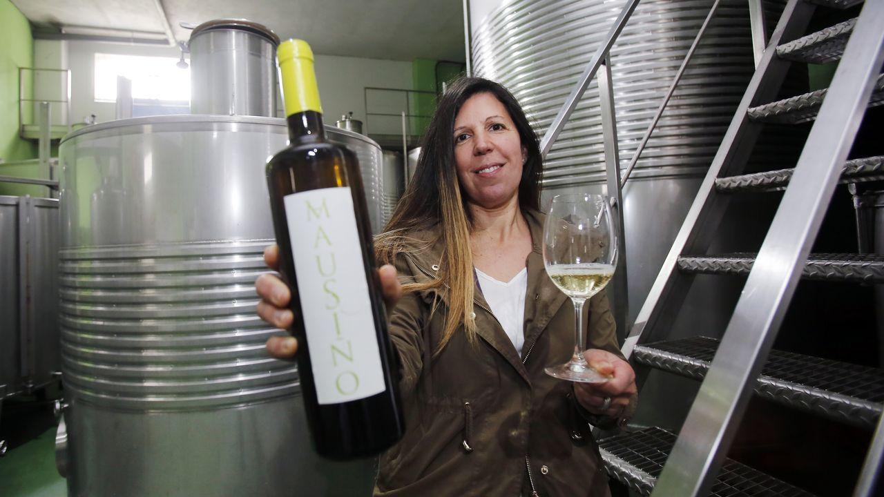 Mausiño, el vino «joyita» que pide paso