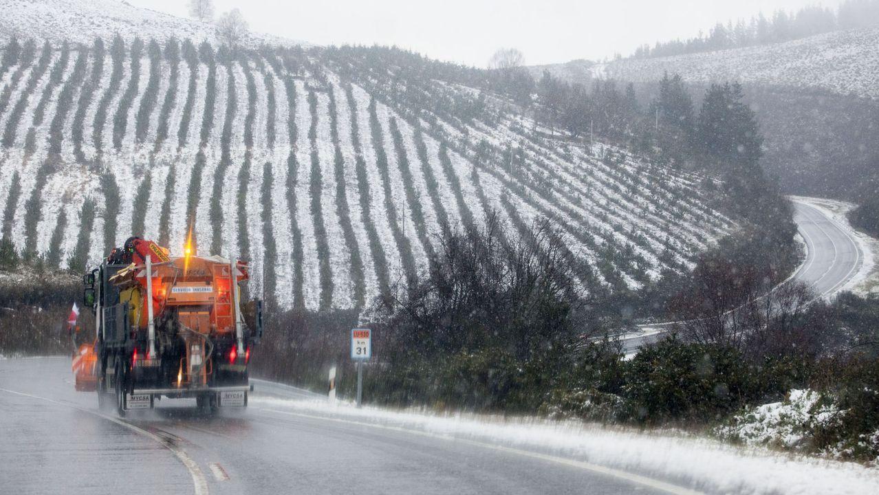 La empresa de A Ulloa que procesa 7 millones de kilos de castaña.Carretera LU-530 (Lugo-A Fonsagrada), dependiente de la Xunta
