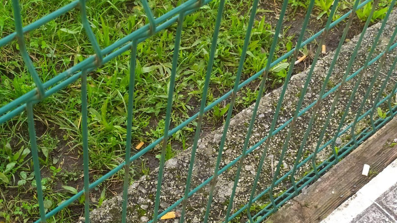 En la foto se pueden ver las colillas en el interior del patio del colegio