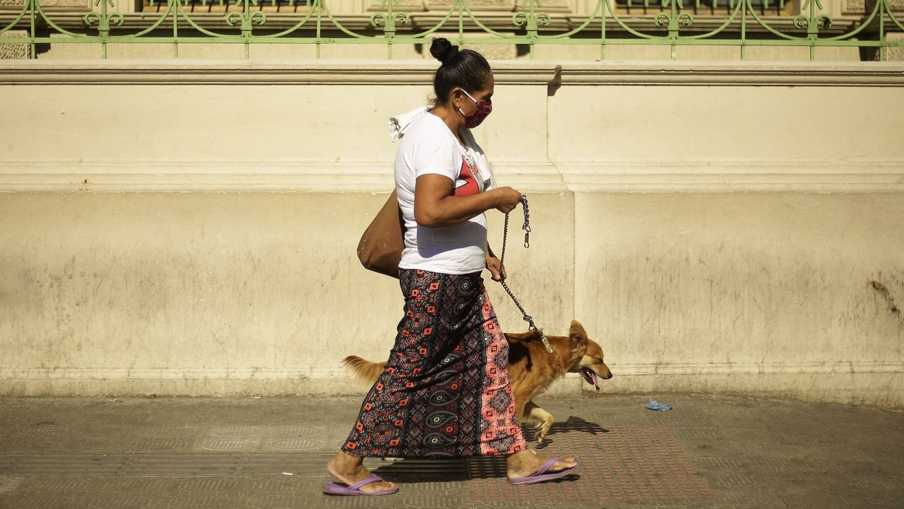 Una mujer pasea su perro protegida con mascarilla