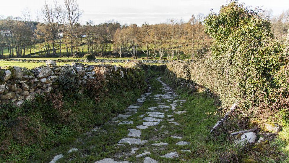 Un trecho del camino en las cercanías del lugar de Noguedo