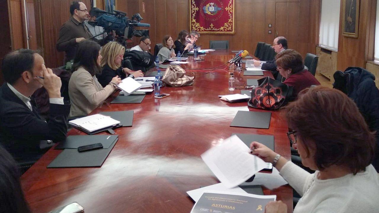 El presidente del Colegio de Médicos de Asturias, Alejandro Braña, ofrece una rueda de prensa