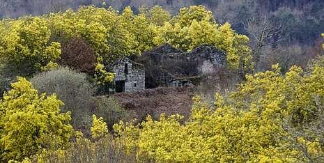 Sona (en la imagen) es uno de los 14 pueblos abandonados que hay en el Concello de O Carballiño, según los datos del Instituto Nacional de Estadística.