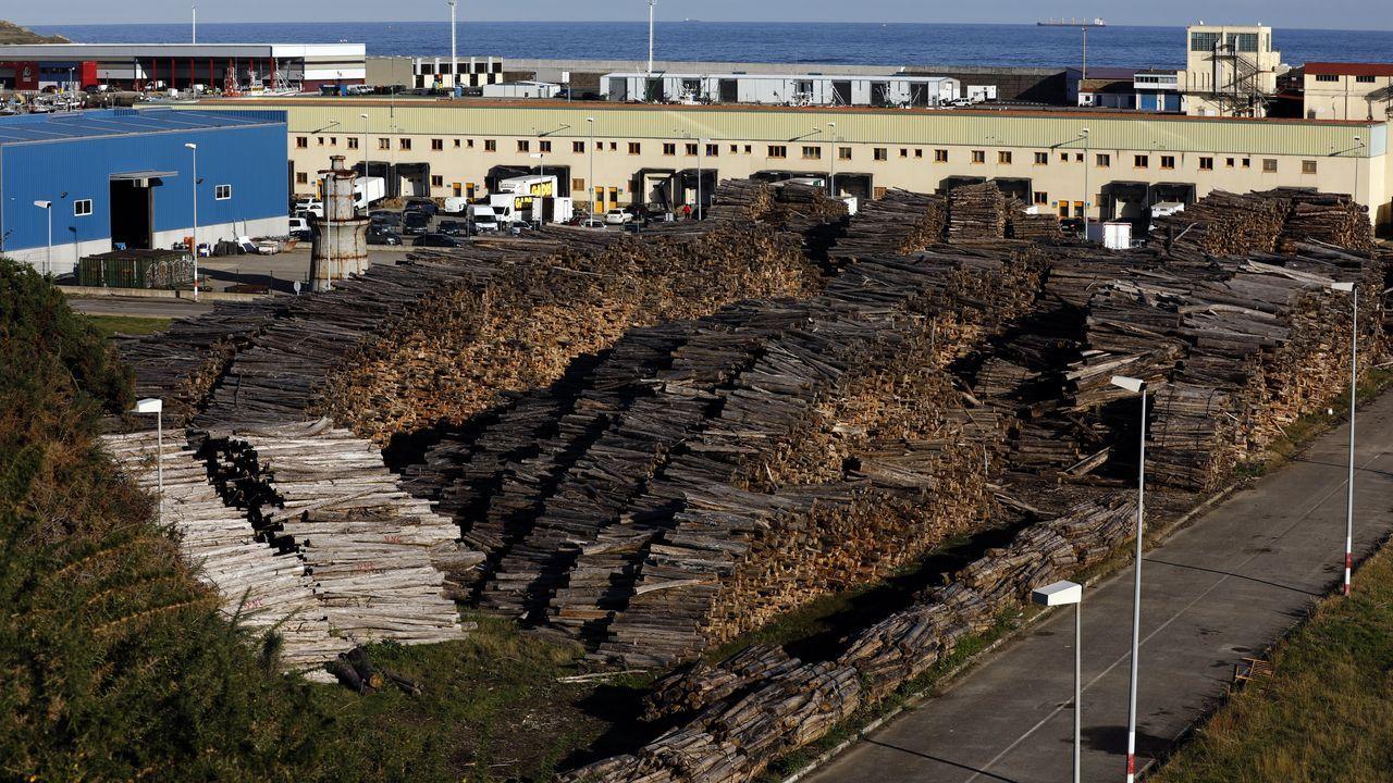 Las espectaculares imágenes que deja Fabien en Ferrol.los documentos    Entre los documentos hay un manual para la plantación de las semillas de eucalipto y una carta para su distribución, así como la consignación de su envío en Astorga.
