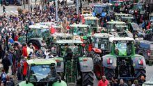 Revuelta agraria: multitudinarias tractoradas en Granada y Pamplona