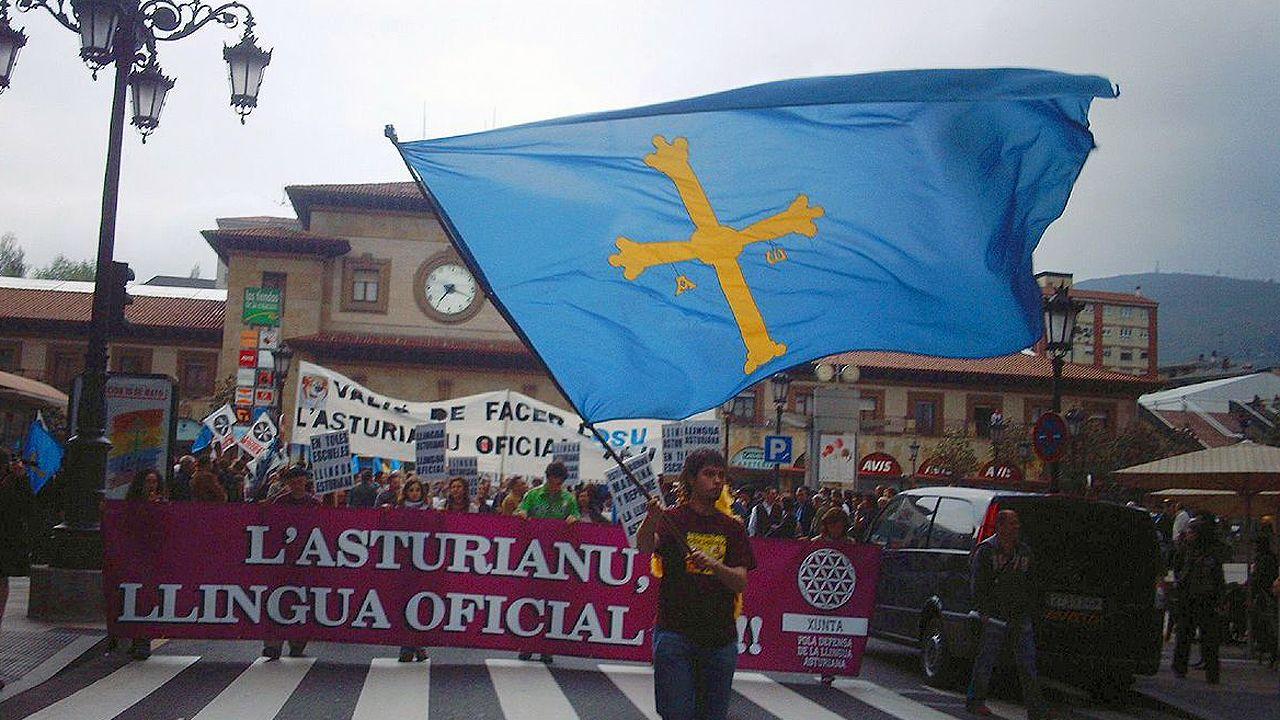 Manifestación por la oficialidad del asturiano