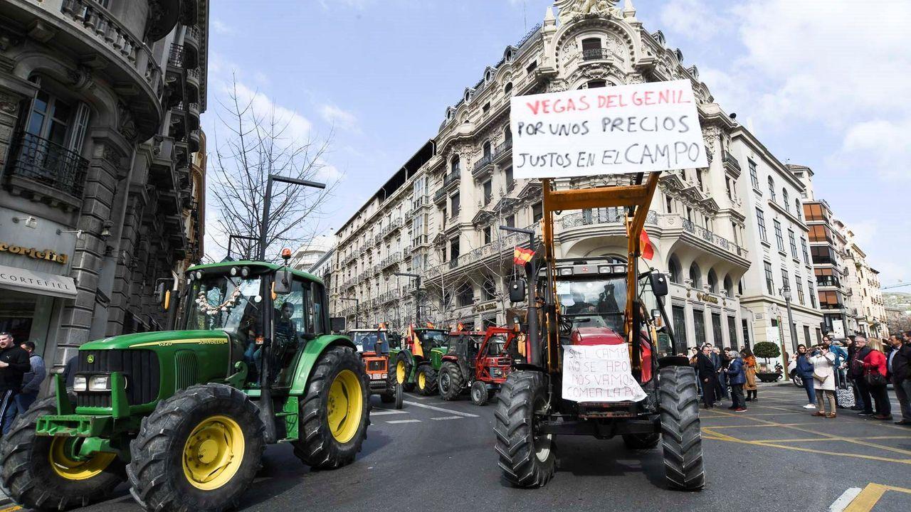 La cumbre de Bruselas se produce en plenas protestas del campo española (en la foto, en Granada)