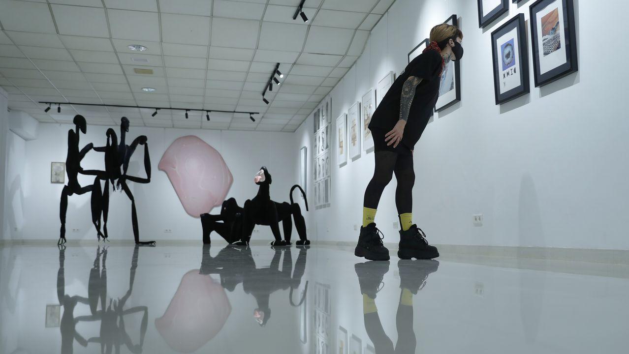 Detalle de la galería de arte en la que rotarán exposiciones de artistas locales