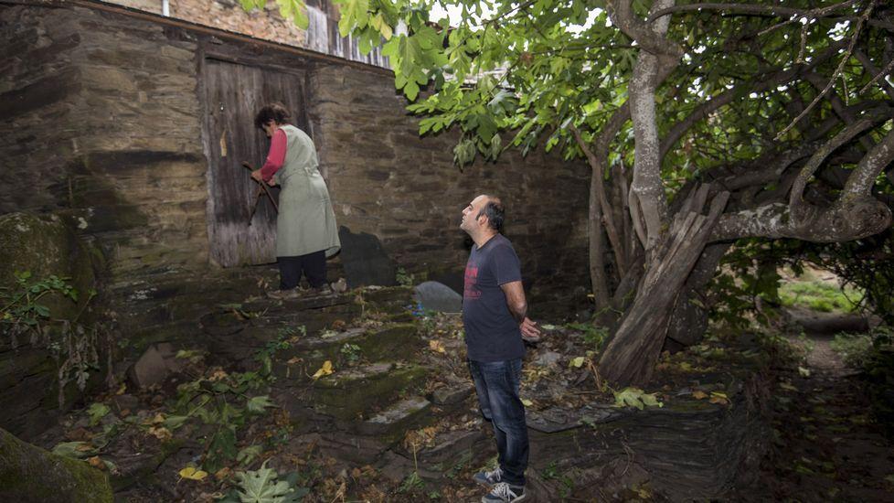 Puerta de entrada del molino de la Casa do Campo