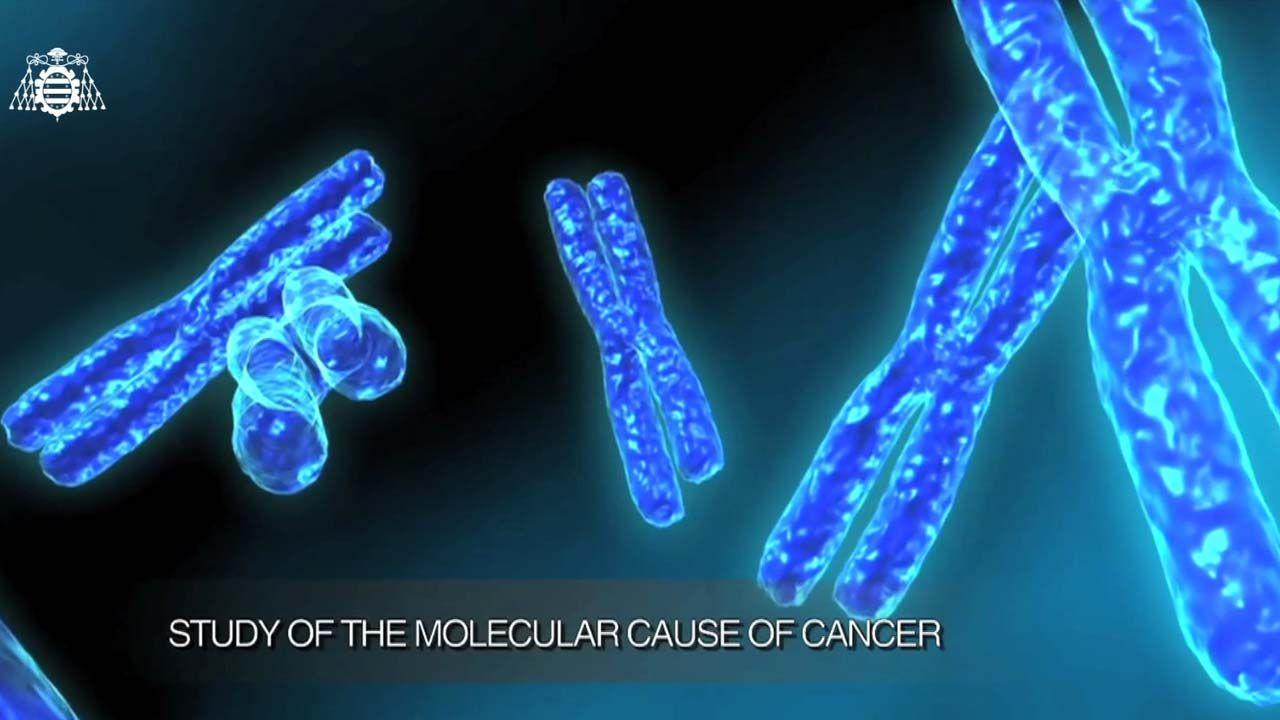Hallan dos mutaciones en la zona no explorada del genoma