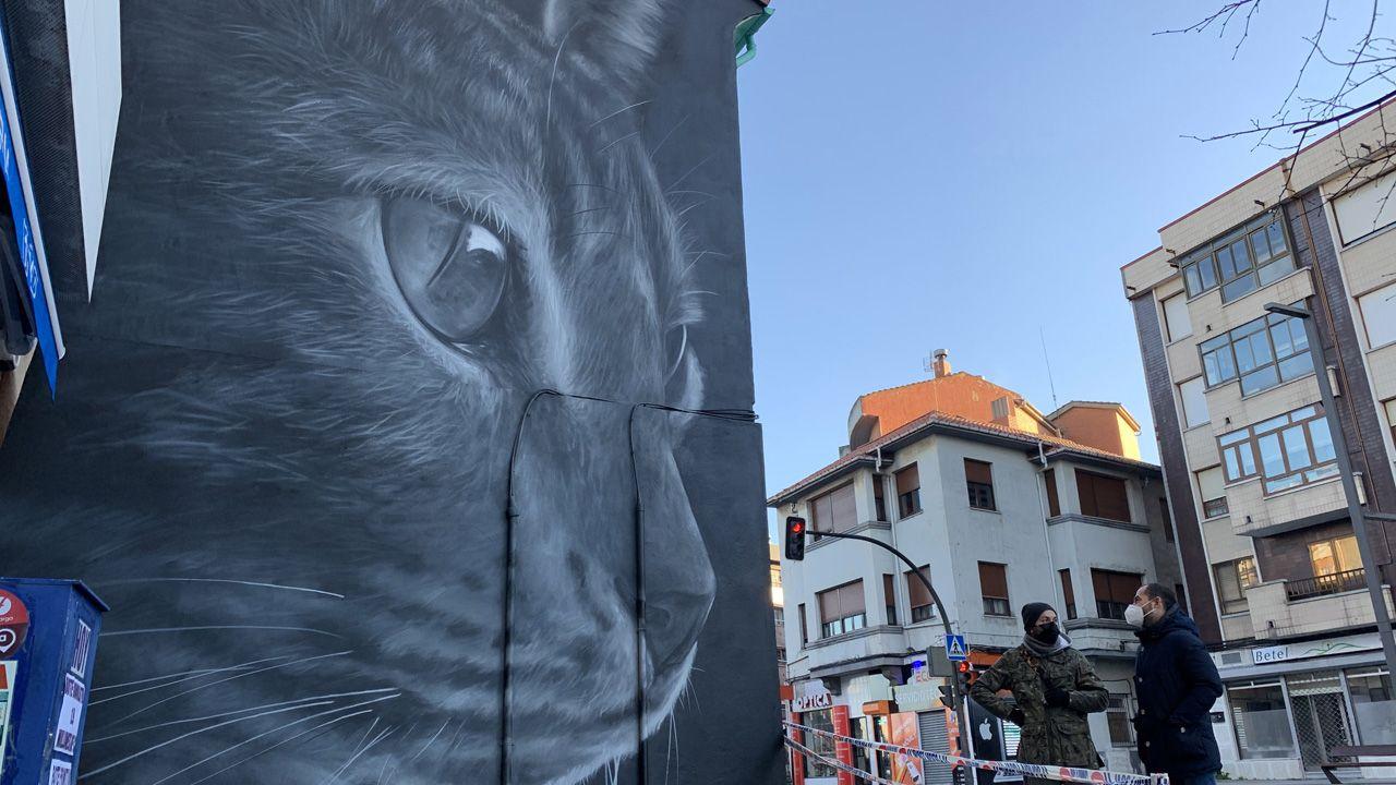 Mural de un gato en Lugones