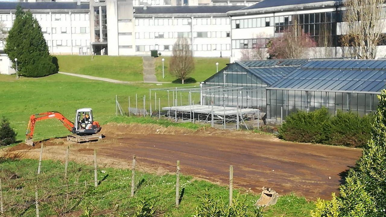 La EPS espera que los primeros cultivos se logren dentro de unos meses