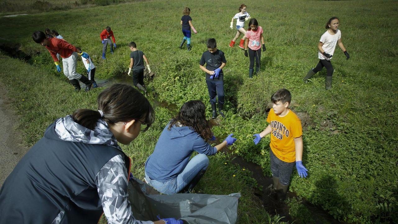 Alumnos del CEIP Mestre Rodríguez Xixirei participan en la limpieza del río Sionlla, en Lavacolla