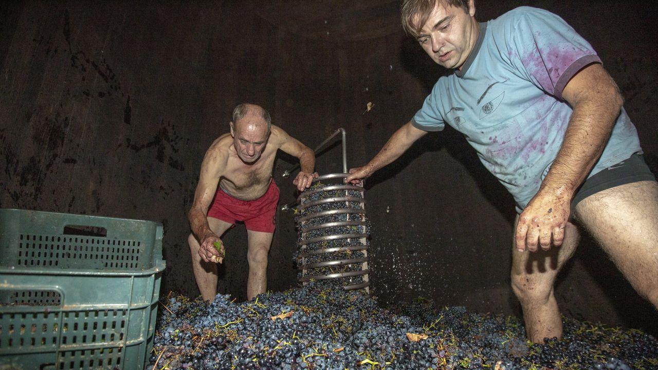 El bodeguero, Pedro Rodríguez (a la derecha), pisa la uva que entra en la barrica