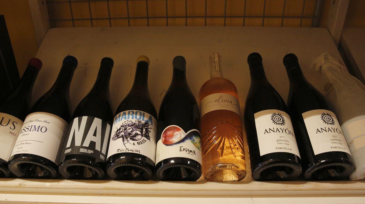 En Colmado 1981 tienen más de 300 referencias de vino